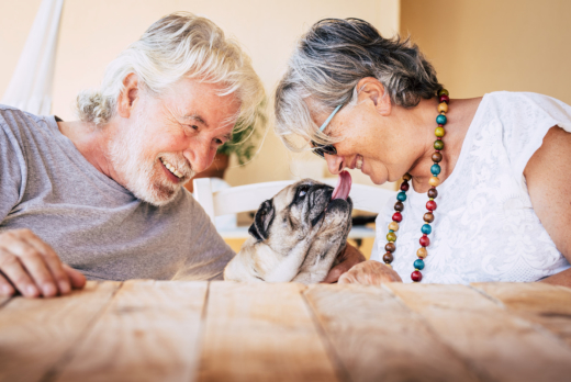 Should You Adopt a Pet in Your Senior Years?